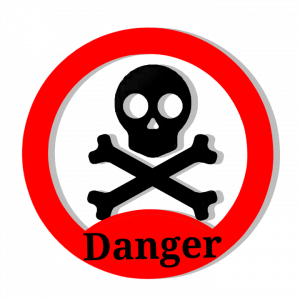 Rossella in pericolo